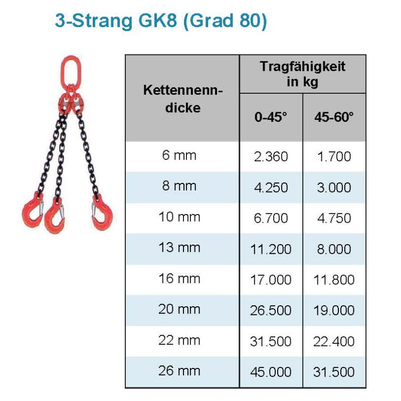 3 Strang Kettengehänge GK 8